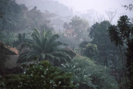 Tour Madagascar Group Travel Unique Flora And Fauna